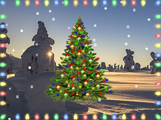 The App Offers Many Ways To Decorate For The Holidays, Including Lights And  Garlands, Different Types Of Snow, Christmas Trees ...